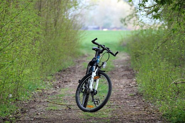 Jazda na rowerze ze smartfonem i nie tylko